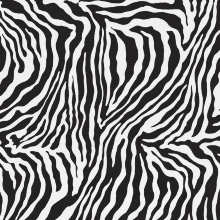 Ape Moonlight Polished Rec Zebra 75×75